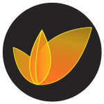 Leaf_button_PNG